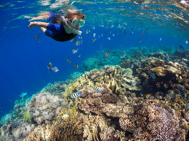 A child snorkelling